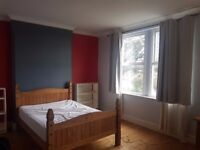 Room to rent in Victorian house