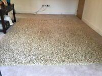 "Large 250 x 300 cms Kelaty ""CASSIA"" colour GOLD 100% pure New Zealand wool rug"
