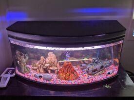 Aquarium tank 360 litre