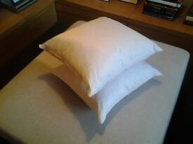 Two feather cushion pads/ inserts/ inners (45 x 45cm)