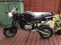 Badboy CX monkeybike,motorbike,scooter