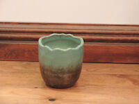 11cm Pot (Delivery)