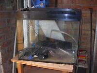 Fish Tank For sale Offers