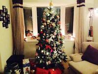 Christmas Tree - snowed effect