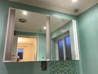 Twin bathroom cabinet with lights