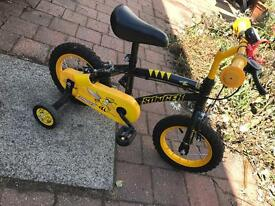 Apollo Stinger Children's Bike