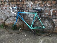 Apollo Vintage Bike