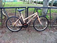 """10 Speed Ladies Mountain Bike For Sale. Fully Serviced, Ready To Ride & Guaranteed. 18"""" Frame."""