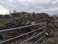 Firewood logs / timber - DIY logs - Hardwood & softwood - South Wales