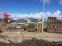 Various size pallets well over hundred the lot for £60