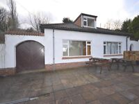 let rent , 4 bedroom large detached Bungalow , Paignton Devon