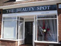 "Shop Sign ""THE BEAUTY SPOT"""