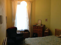 Flatmate wanted for superb Canaan Lane flat - available Saturday July 1st