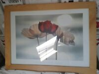 LARGE FRAMED POPPIES PICTURE