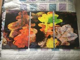 set of three leaf pictures / prints / paintings