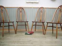 Stunning Set of 4 Ercol Quaker Swan Back Chairs