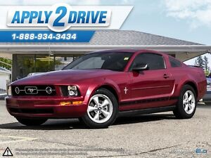 2008 Ford Mustang  Leather, Cold Air, Throttle Spacer, Pypes Edmonton Edmonton Area image 1