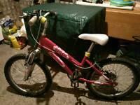 Girls bike Raleigh Chloe 20inch