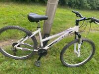 Raleigh all terrain mountain bike