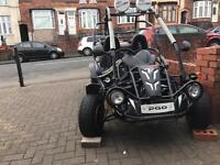 PGO QUADZILLA 200cc buggy - road legal - not quad yzf rmz rm kx r1 125 250cc raptor cr yamaha suzuki
