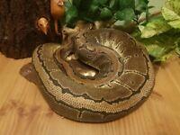 Female Pinstripe royal python
