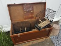 Show cages and box . Three of. Can seperatly . £25 a box