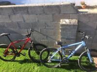 Carrera mountain bikes