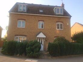 1 bedroom flat in Clapham