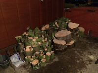 Large Quantity of Unprocessed Firewood LOGS For Sale (Wood Burner)
