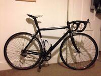 Flandria C-SIX Carbon Single Speed Road Bike 54cm - Sub 7kgs - Colnago, Cinelli, Fixie, Pista