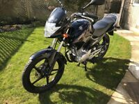 Yamaha YBR 125 cc.