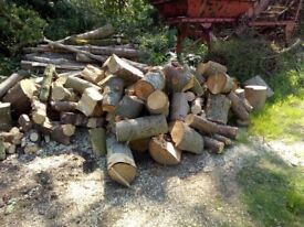 Air dried seasoned, split firewood for sale and also unseasoned, uncut logs for fire wood for sale.