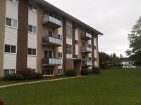 Huge 3 bedroom units coming available for Jan/Feb 1st