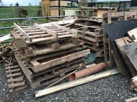 Old Wooden Pallets, Batons, Old Shed doors - Firewood or Recycle