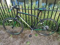 Avanti Giro Hybrid Bike 8speed 700cc Fast Size Large 2016 not Trek, Giant