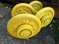Commercial fixed dumbbells 2 x 12.5 kg