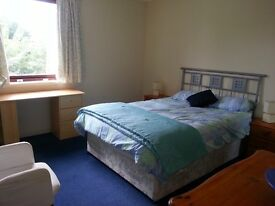 Available now a beautiful spacious double bedroom in a two bed flat in Polwarth