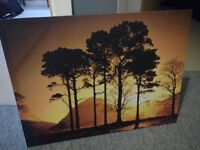 Sunset behind trees canvas