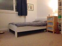 Double Room in Friendly Flatshare, Islington