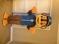 UK SELLER new adult look alike Chase Mascot Costume fancy dress Dog Dress