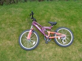 Raleigh Mission Extreme Girls Mountain Bike 20 inch Wheels Rarely Used