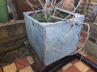 Vintage riveted galvanised water tank planter plant pot