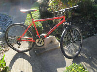 Dawes Shuniah Front Suspension Mountain Bike