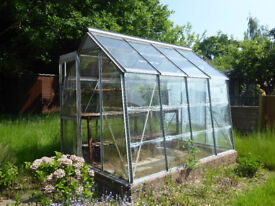 Crittall Hope greenhouse - original - with instruction booklet - in Kenilworth
