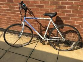 Raleigh Pioneer Men's Bike