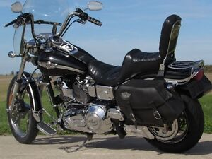 2003 harley-davidson FXDWG Dyna Wide Glide   $7,000 in Options a London Ontario image 3