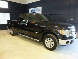 2014 Ford F-150 SCREW XTR ECOBOOST