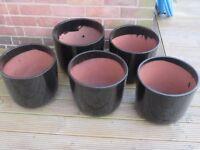 5 Black Glazed Planters