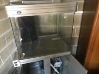 Fish Tank and stand with sump 6 years old but never used was £800 new