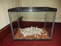 Small glass aquarium